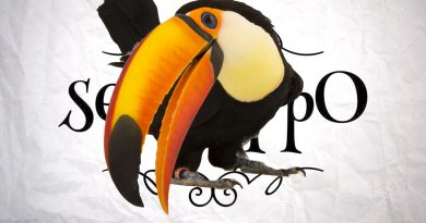What's The Opposite Of A Toucan?