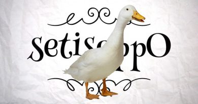 What's The Opposite Of A Goose?